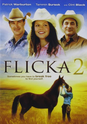 DVD : Flicka 2 (Dolby, Dubbed, , Widescreen, AC-3)