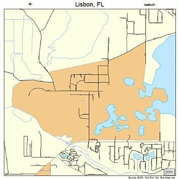 Amazoncom Large Street Road Map of Lisbon Florida FL Printed