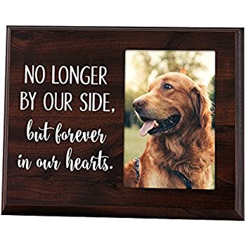 Amazon.com : Banberry Designs Dog Bereavement Memorial Photo Frame ...