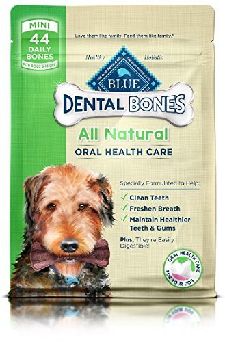 Blue Buffalo Dental Bones Mini (Pack of 2- 12 oz bags - PACKAGING MAY VARY)