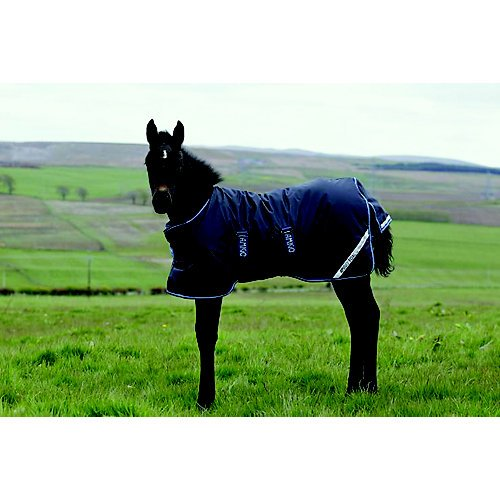 Amigo Foal Turnout Blanket 60 Navy