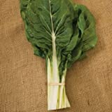 Heat Tolerant. The standard green Swiss chard. The leaves are medium green and savoyed (crinkled) with white veins and broad, white stems. Organically grown seeds. David's Garden Seeds is a Veteran owned business that has been offering qualit...