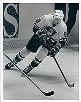 1993 Press Photo NHL Mighty Ducks of Anaheim Center Anatoli Semenov - snb3917