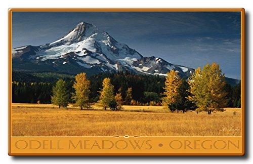 Odell Meadows Oregon Aluminum HD Metal Wall Art by Artist Ike Leahy ( 11