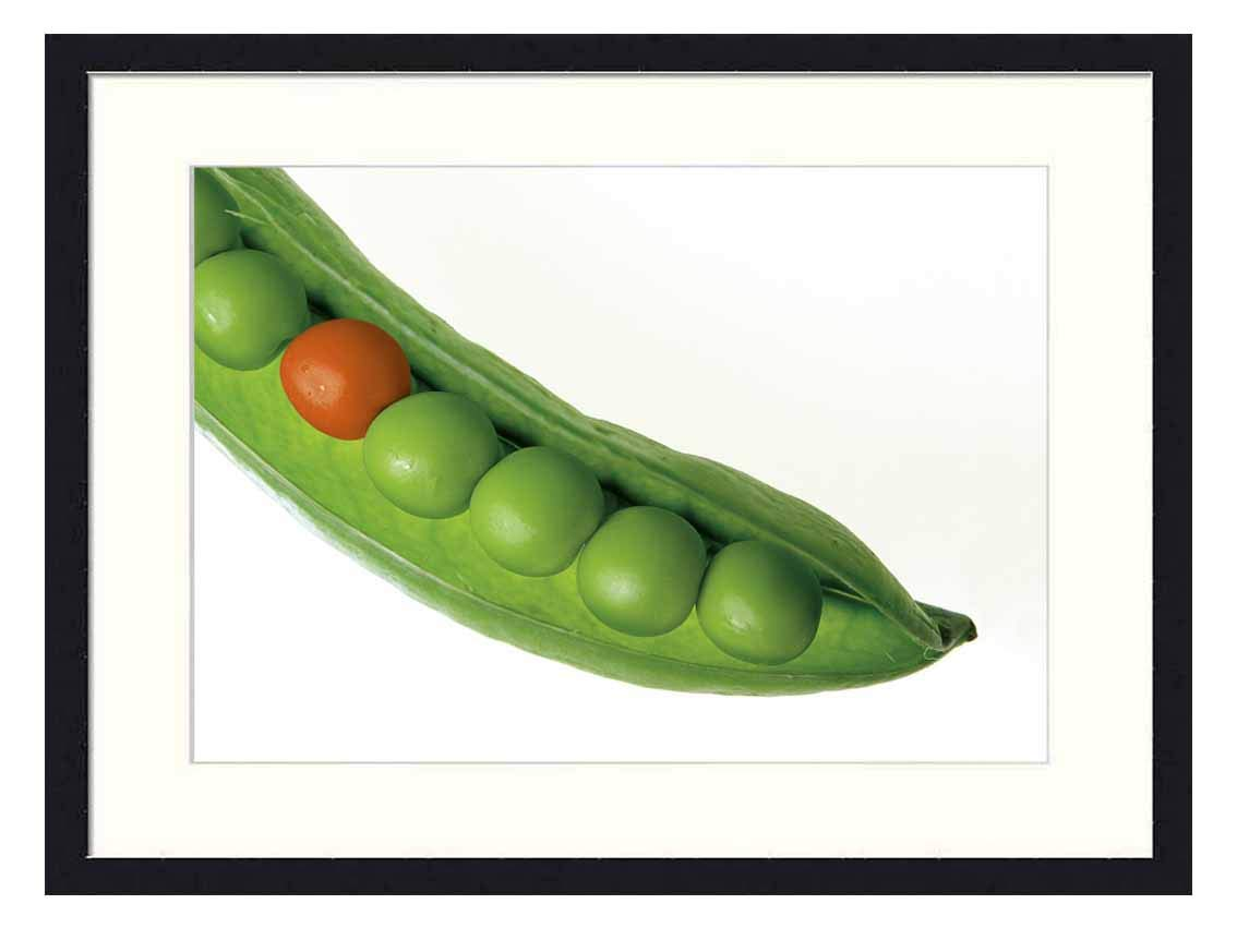 Wall Art Print Solid Wood Framed for Home Decor and Office (20x14 inches)-Peas Pod Pea Pod Green Fresh Different Stand Out