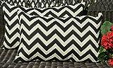 Resort Spa Home Decor Set of 2 Indoor/Outdoor Decorative Lumbar/Rectangle Pillows - Black and Ivory Chevron
