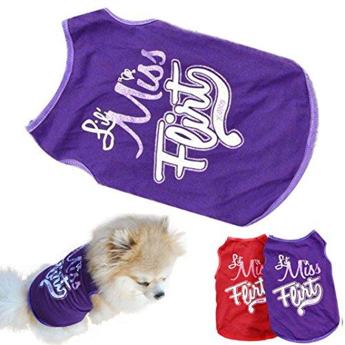 (OOEOO Puppy Vest, Cat Dog Pet Clothes Red/Violet Tops T-Shirt Summer Apparel Doggie Shirt (Purple, XS))