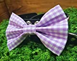Purple Gingham Checkered Pet Bow Tie
