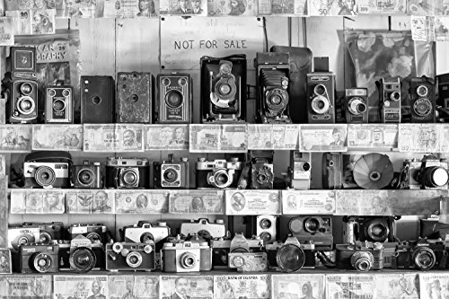 Antique Vintage Camera Display, Black and White Fine Art - Maui J