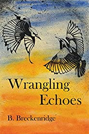Wrangling Echoes