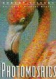 Photomosaics, , 0805051708