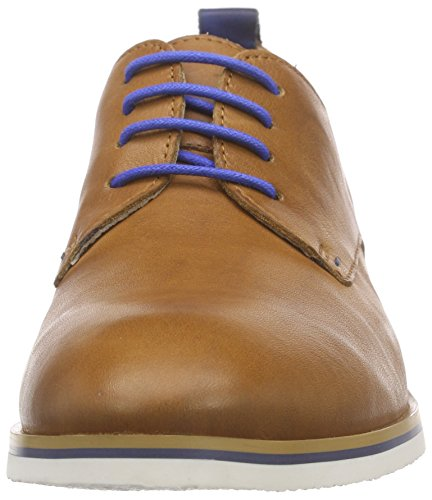 Royal Marrone W5g Donna Scarpe v16 Oxford Brandy Pikolinos H6wZg6