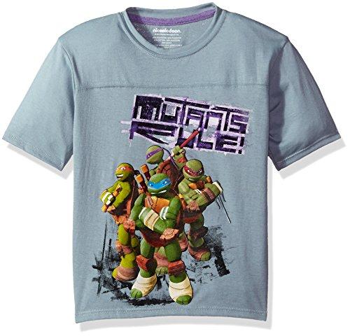 Four Ninja Turtles (Nickelodeon Little Boys' Ninja Turtles T-Shirt, Pewter Grey, 4)