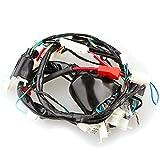 Wireing Loom for Lexmoto Hunter 50 TD50Q (WRLM007)