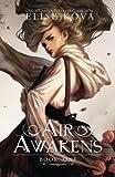 Air Awakens (Air Awakens Series Book 1) (Volume 1)