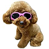 Alfie Pet by Petoga Couture - Larry Sun Glasses for Dogs and Cats - Color: Pink, Size: Small