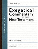 img - for 1 Corinthians (Zondervan Exegetical Commentary on the New Testament) book / textbook / text book