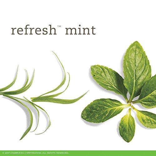 Buy mint teas