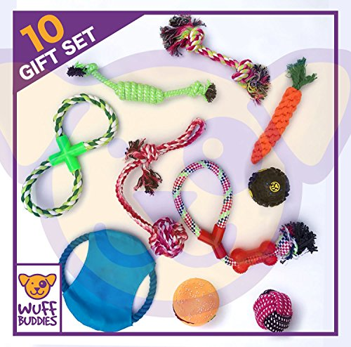 10 pack dog toy set all sizes ropes, balls, chew, squeaky
