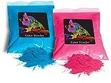 Holi Color Powder 1lb Pink and 1lb True Blue (gender reveal)