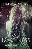 A Walk Into Darkness (Ashley McCoy #1)
