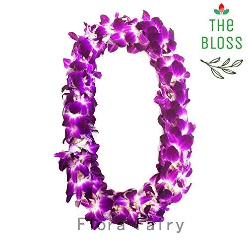 Standard Purple Bloss Dendrobium Graduation product image