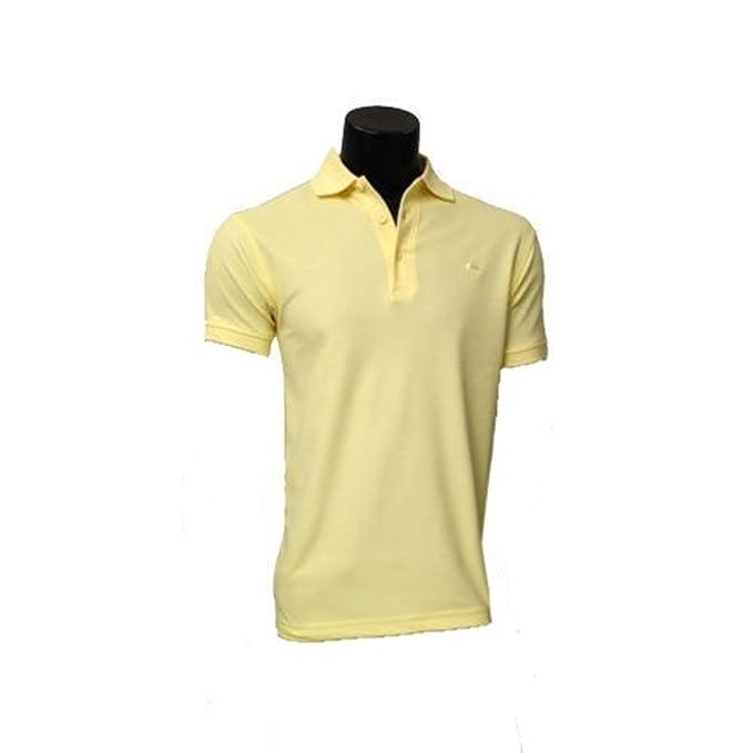 Arnold Palmer C + M Classic Polo Liso. (Lemon 22), Large: Amazon ...