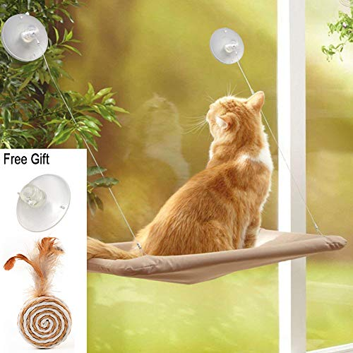 ZALALOVA Cat Window Perch, Cat Window Seat Bed Hammock Space Saving Design with 1Pc Funny Cat Toys 5Pcs Suction Cups Cat Shelves All Around 360¡ã Sunbath Holds Up to 50lbs for Any Cat Size