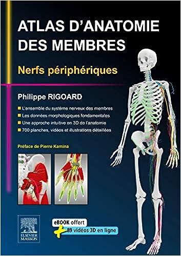Atlas d\'Anatomie des Membres: Nerfs Périphériques: Amazon.ca ...