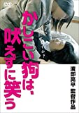 Japanese Movie - Kashikoi Inu Wa, Hoezuni Warau (Shady) [Japan DVD] TCED-2498