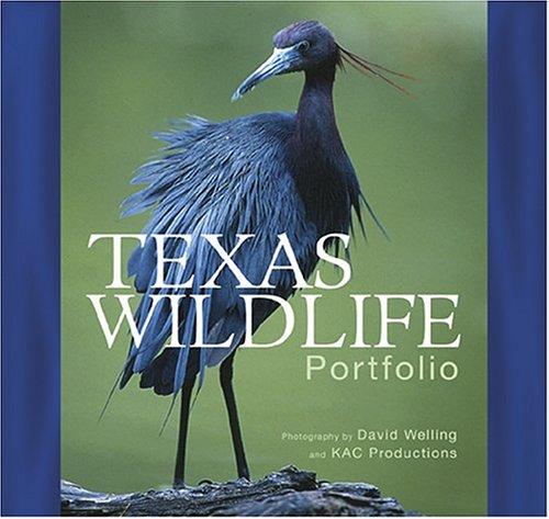 Texas Wildlife Portfolio