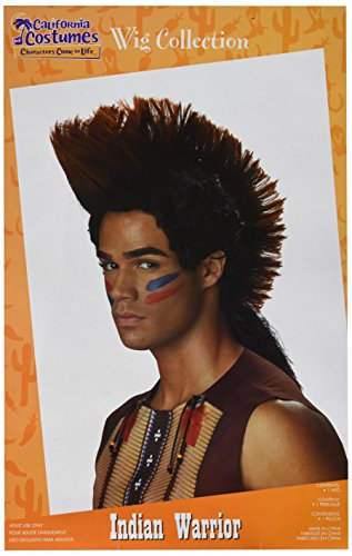 California Costumes Men's Indian Warrior Wig, Auburn/Black, One Size - Mohawk Indian Costume