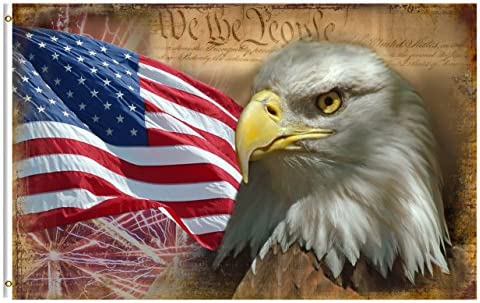 bb560e11631 Amazon.com   ShineSnow USA Vintage American Flag Bald Eagle 3x5 Feet ...