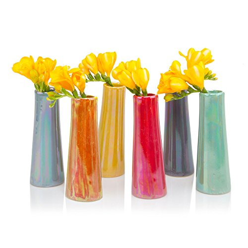 Chive Galaxy, Small Cylinder Ceramic Bud Flower Vase,