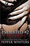First Debt (Indebted) (Volume 2)