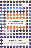 img - for The Tetherballs of Bougainville: A Novel book / textbook / text book