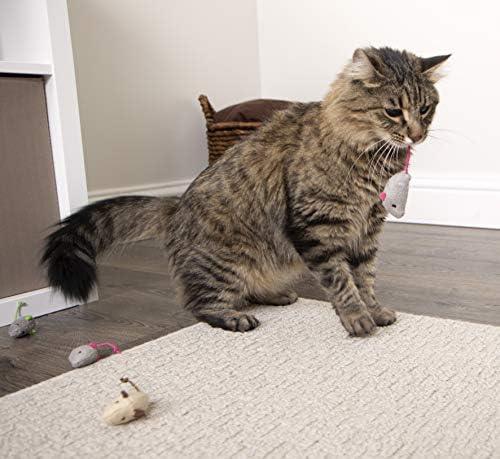 SmartyKat Catnip Cat Toys 8