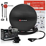 SPORUS Yoga Ball (65cm) with Stability Base and 2 Exercise Bands, Exercise Ball for Fitness, Balance Training & Workout [Quick Pump Included]