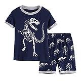 Hsctek Boys' Pajamas Set, Children' Short PJS, Kids' Cotton Sleepwear Clothes(7, Blue Dinosaur 1)