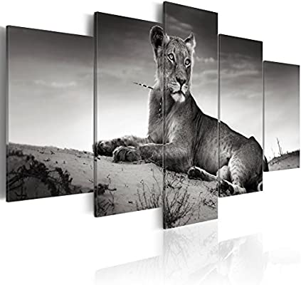 Amazon Com Konda Art 5 Panel Black And White Lion Wall Pictures Animal Portrait Painting On Canvas Modern Home Decoration Print Artwork Stretched On Wood Frames Lioness In A Desert 40 X 20 Posters