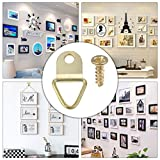 100Pcs Small Triangle D-Ring Picture Frame