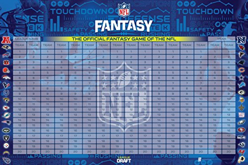 NFL 2017 Officially Licensed Fantasy Football Draft Kit