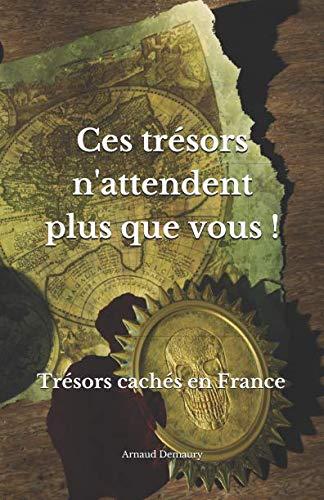 Ces trsors n'attendent plus que vous !: Trsors cachs en France (French Edition)