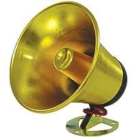 Autopipe PA Speaker