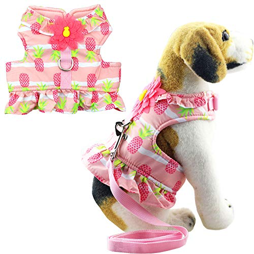 Bolbove Soft Pet Lovely Pineapple Vest Harness and Leash Set for Cats Small Dogs (Small)