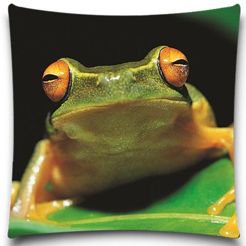 The little frog on the green leaf Pillow Covers (Car Seat Cover Frogs With Leaves compare prices)
