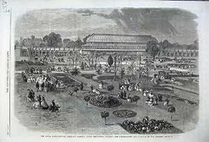 Impresión Antigua de 1861 Arcadas Del Sur del Invernadero de los Jardines de Kensington