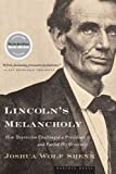 Lincoln's Melancholy: How Depression Challenged a President and Fueled His Greatness, Joshua Wolf Shenk, 0618773444