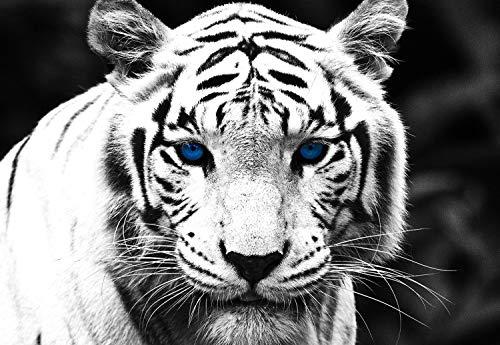 Blue Black Tiger - PigBangbang,Basswood -White Black Tiger with Blue Eyes - 1500 Piece Jigsaw Puzzle (34.4 X 22.6'')