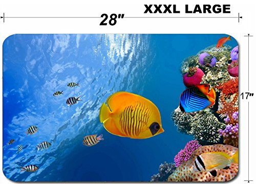 Liili Large Table Mat Non-Slip Natural Rubber Desk Pads IMAGE ID: 10397931 Masked butterfly fish Chaetodon semilarvatus Red Sea Egypt ()